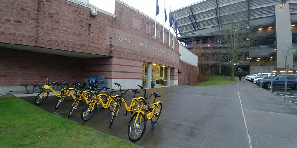 Ofo bikes queued up dock-free, ready for their next rider